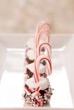 Marshmallow ο κάλαμος καραμελών Χριστουγέννων μεταχειρίζεται Στοκ εικόνα με δικαίωμα ελεύθερης χρήσης