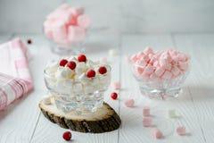 Marshmallow ρόδινο και άσπρο στο κύπελλο γυαλιού με το το βακκίνιο Στοκ εικόνα με δικαίωμα ελεύθερης χρήσης