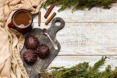 Marshmallow στη σοκολάτα Στοκ φωτογραφία με δικαίωμα ελεύθερης χρήσης