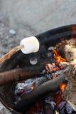 marshmallow Στοκ εικόνα με δικαίωμα ελεύθερης χρήσης