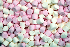Marshmallow background Royalty Free Stock Photo