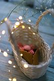 Marshmallow in a basket with a horn with garlands stock images