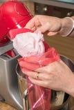 Marshmallow caseiro Fotografia de Stock Royalty Free