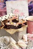 Marshmallow, chocolate and biscuit bars Stock Image