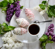 Marshmallow, a cup of coffee and lilac. Stock Image
