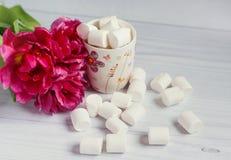Marshmallow em uma xícara de café Foto de Stock Royalty Free