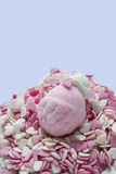 Marshmallow in form of strawberries, and sugar hearts Stock Image
