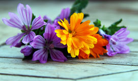 Marshmallow and marigold. Violet marshmallow flowers and orage marigold flowers together on a wooden table Royalty Free Stock Images