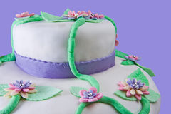 Marshmallow Multilayer Cake Closeup Royalty Free Stock Photo