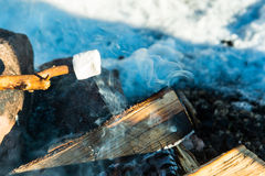 Marshmallow na ogieniu zdjęcie royalty free