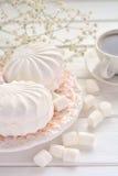 Marshmallow na variedade em uma placa Imagem de Stock