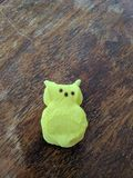 Marshmallow peep with ears bitten off. Royalty Free Stock Images