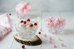 Marshmallow pink and white in glass bowl with cranberry Royalty Free Stock Image