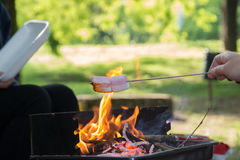 Marshmallow preparation on fire in a park. On a sunny day Royalty Free Stock Photos