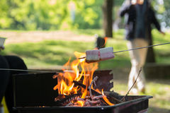 Marshmallow preparation on fire in a park. On a sunny day Royalty Free Stock Photography