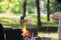 Marshmallow preparation on fire in a park. On a sunny day Stock Photography
