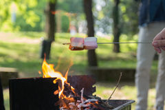 Marshmallow preparation on fire in a park Stock Images