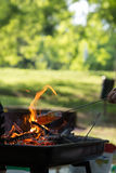 Marshmallow preparation on fire in a park. On a sunny day Stock Photo