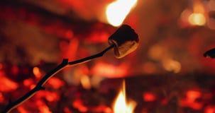 Marshmallow que cozinha sobre o fogo do acampamento video estoque