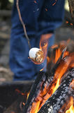 Marshmallow Roast. Roasting a marshmallow on a stick over a campfire royalty free stock photos