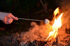 Marshmallow roast on camp fire. Woman hand roast Marshmallow on camp fire Royalty Free Stock Photography
