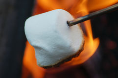 Marshmallow Roasting. A marshmallow roasting over a campfire royalty free stock photos