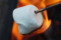 marshmallow stekande Royaltyfria Foton