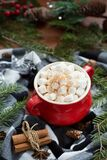 Hot chocolate surrounded by christmas items
