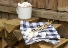 Marshmallow on wooden sticks for frying on an open fire. Rustic style, selective focus. Horizontal Royalty Free Stock Image
