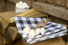Marshmallow on wooden sticks for frying on an open fire. Rustic style, selective focus. Horizontal Royalty Free Stock Images