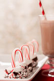 Marshmallowgodis Cane Christmas Goodies Royaltyfria Bilder