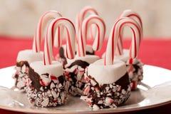 Marshmallows με την εμβύθιση σοκολάτας και κάλαμοι καραμελών για τα Χριστούγεννα TR Στοκ εικόνες με δικαίωμα ελεύθερης χρήσης