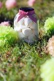 Marshmallows στην τράπεζα του γυαλιού Στοκ εικόνες με δικαίωμα ελεύθερης χρήσης