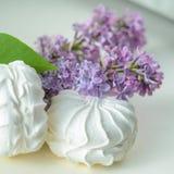 Marshmallows στο λευκό Στοκ Εικόνα