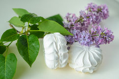 Marshmallows στο λευκό Στοκ Φωτογραφία