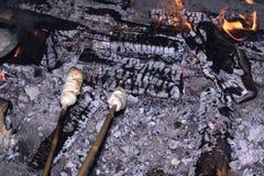 marshmallows ψήσιμο Στοκ Φωτογραφίες