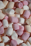 Marshmallows Fotografia de Stock Royalty Free
