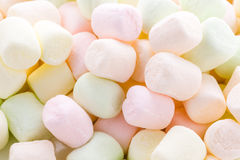 marshmallows Fotografie Stock