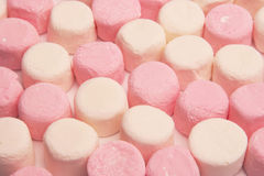marshmallows royaltyfria foton