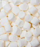 marshmallows Arkivbilder