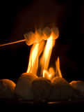 Marshmallows Imagem de Stock Royalty Free