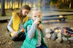 Marshmallows bebendo do chá e da repreensão da menina preteen bonito na vara na fogueira Criança que tem o divertimento no fogo d foto de stock royalty free