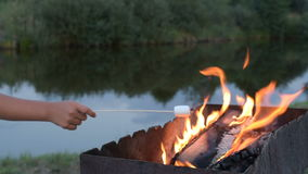 Marshmallows On Camping Fire Stock Video