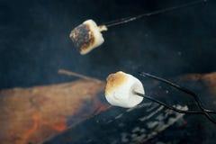Marshmallows da repreensão sobre um fogo imagem de stock
