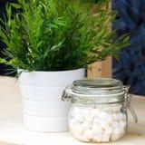 Marshmallows em um frasco de vidro e em um potenciômetro de flor branca com verdes fotos de stock royalty free