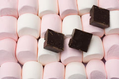 Marshmallows gigantes com chocolate da laje Fotos de Stock