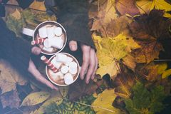 Marshmallows and marshmallow on the background of autumn leaves. stock photography