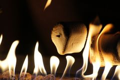 Marshmallows roasting on an open fire. Close up of marshmallows roasting on an open fire at night Stock Photography