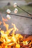 Marshmallows. Roasting marshmallows over the campfire Stock Photos