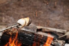 Marshmallows on a stick over a bonfire. Two toasted marshmallows on a stick over a bonfire at the camp grounds Royalty Free Stock Photography